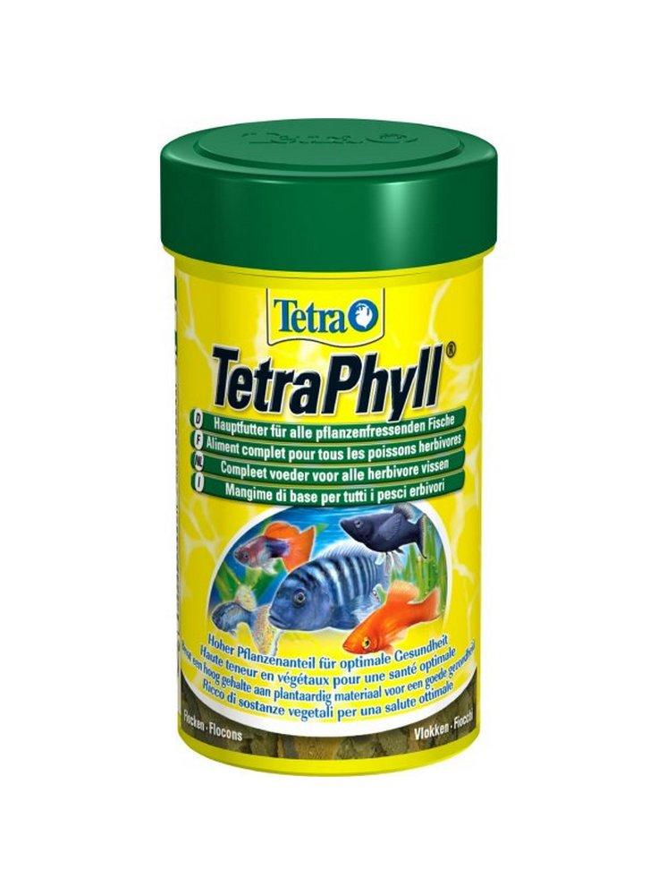 Tetra_Phyll