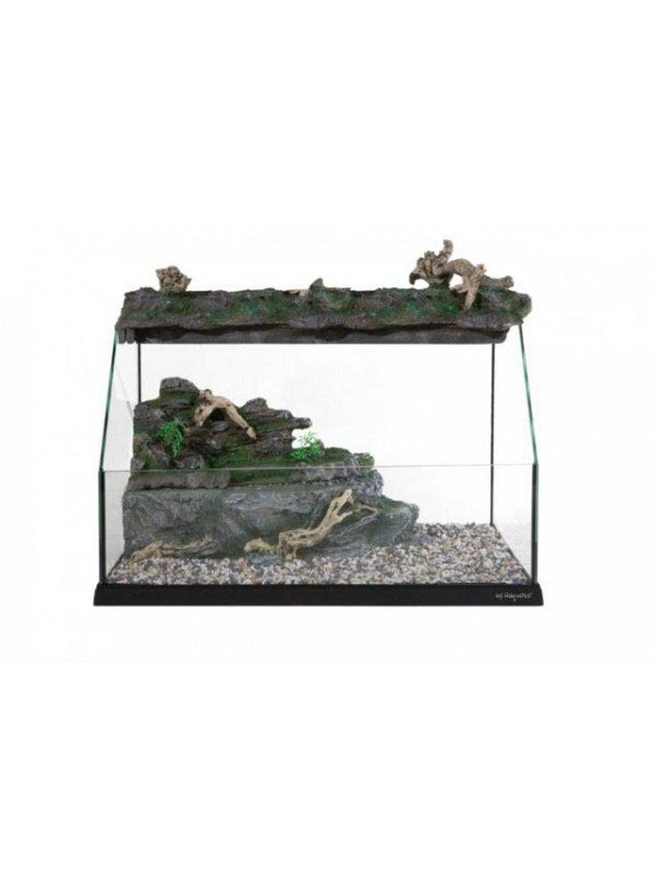 Tartarughiera tortugas