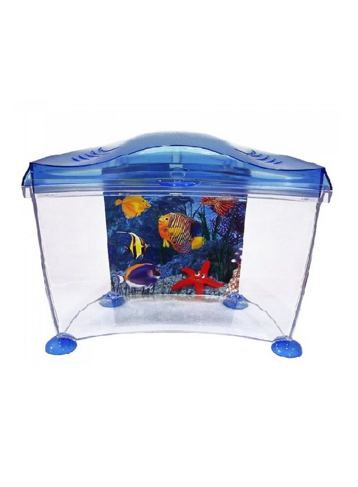 Acquario marina goldfish blu e rosa