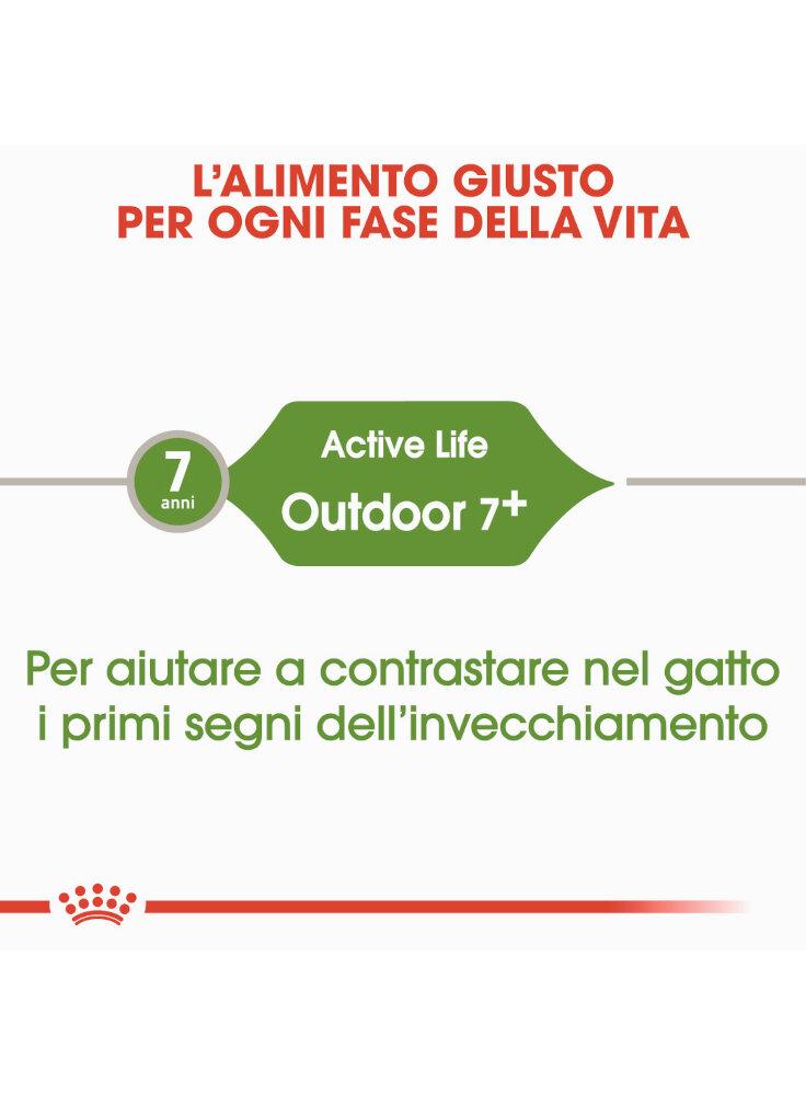 active-life-outdoor-7-gatto-royal-canin-1