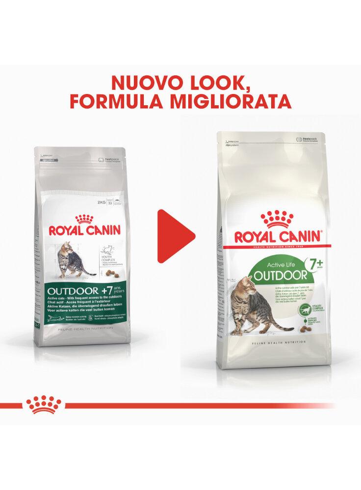 active-life-outdoor-7-gatto-royal-canin-5