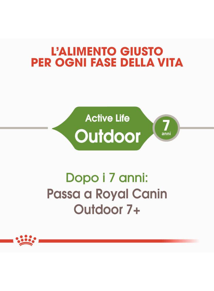 active-life-outdoor-gatto-royal-canin-1