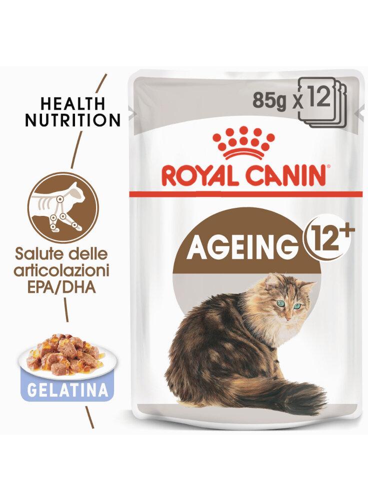 ageing-12-buste-gelatina-gatto-royal-canin-12x85-gr