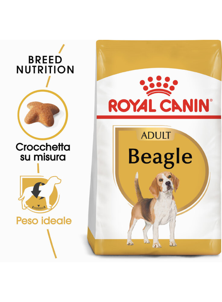 beagle-adult-royal-canin-12-kg