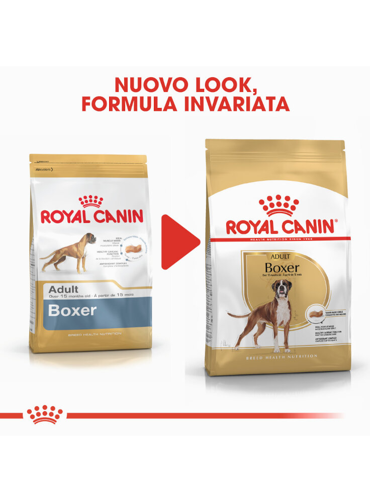 boxer-adult-royal-canin-4