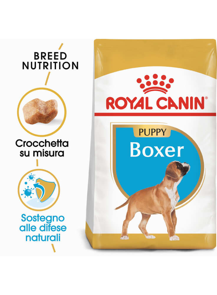 boxer-puppy-royal-canin-12-kg