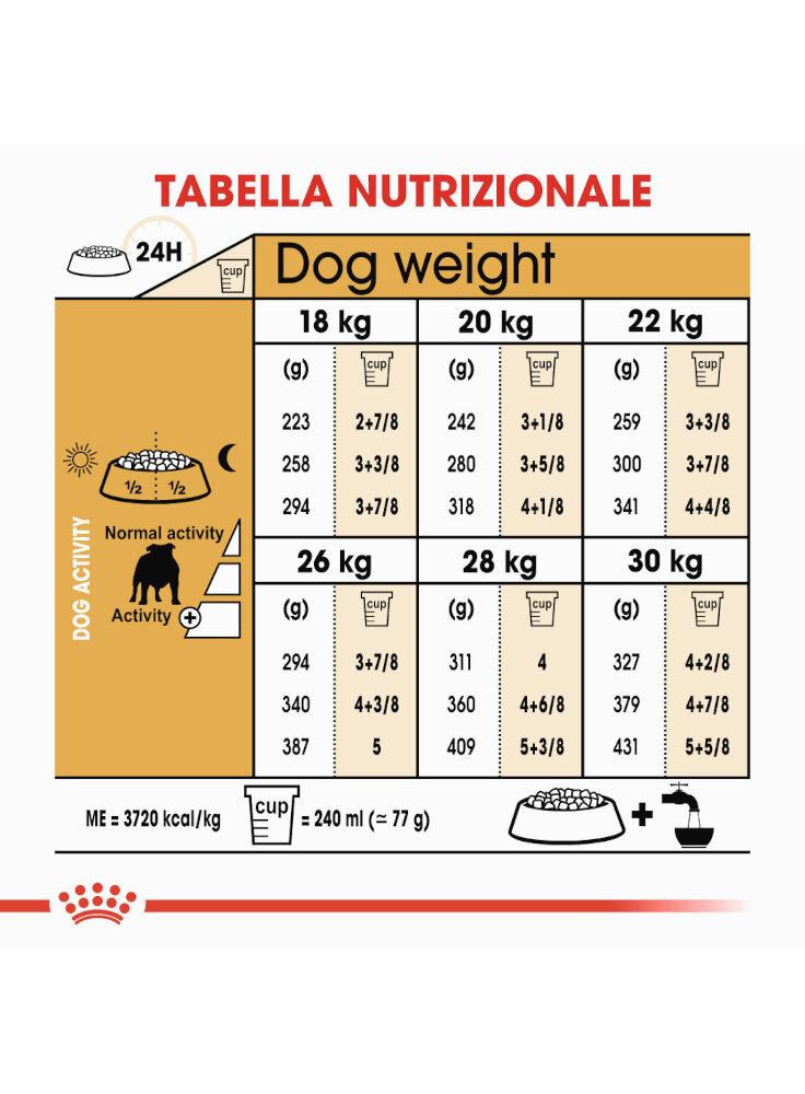 bulldog-adult-royal-canin-5