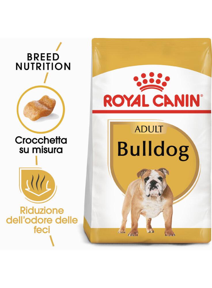 Bulldog Adult Royal Canin
