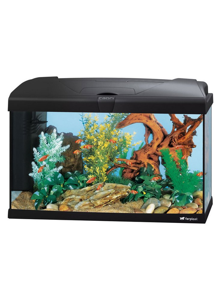 Acquario capri 60 LED ferplast lt 60