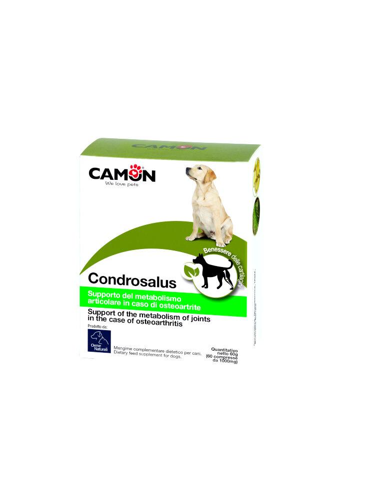 Camon Condrosalus rinforza e protegge la cartillagine 60cpr