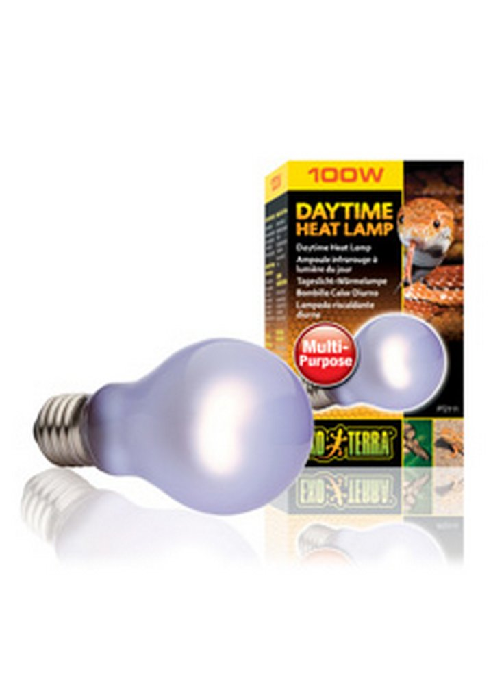 daytime_heat_lamp_100w_2111