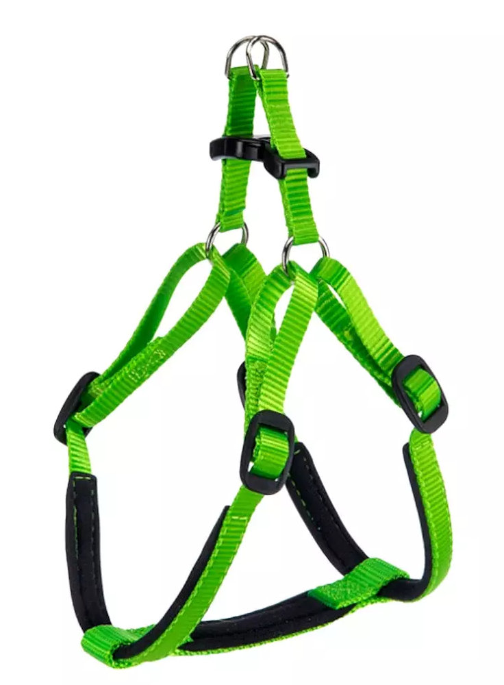 daytona-p-medium-verde-pett