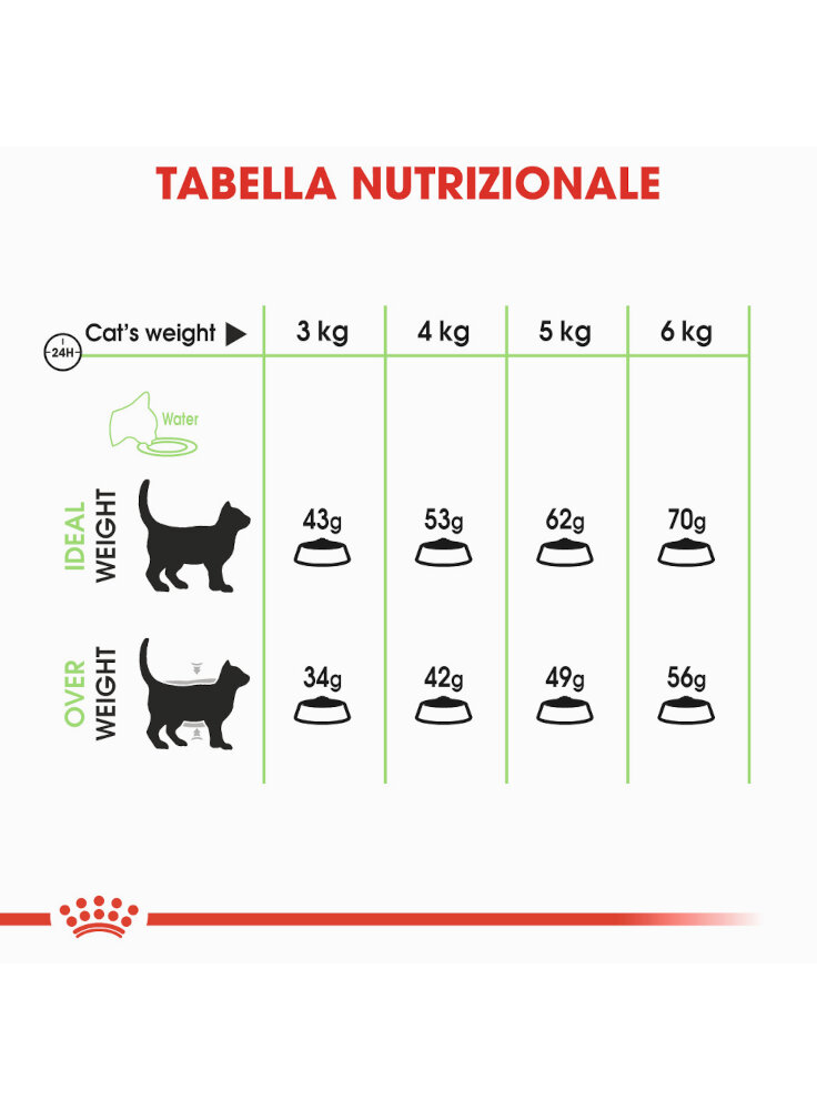 digestive-care-gatto-royal-canin-3