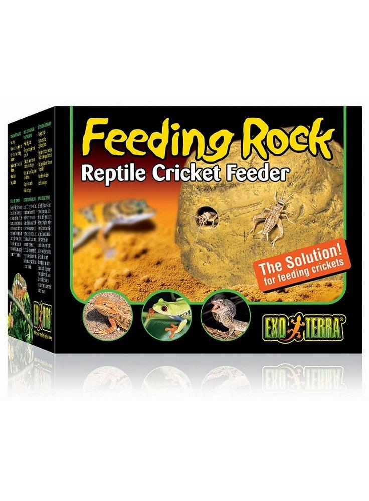 Dispenser di grilli feeding rock