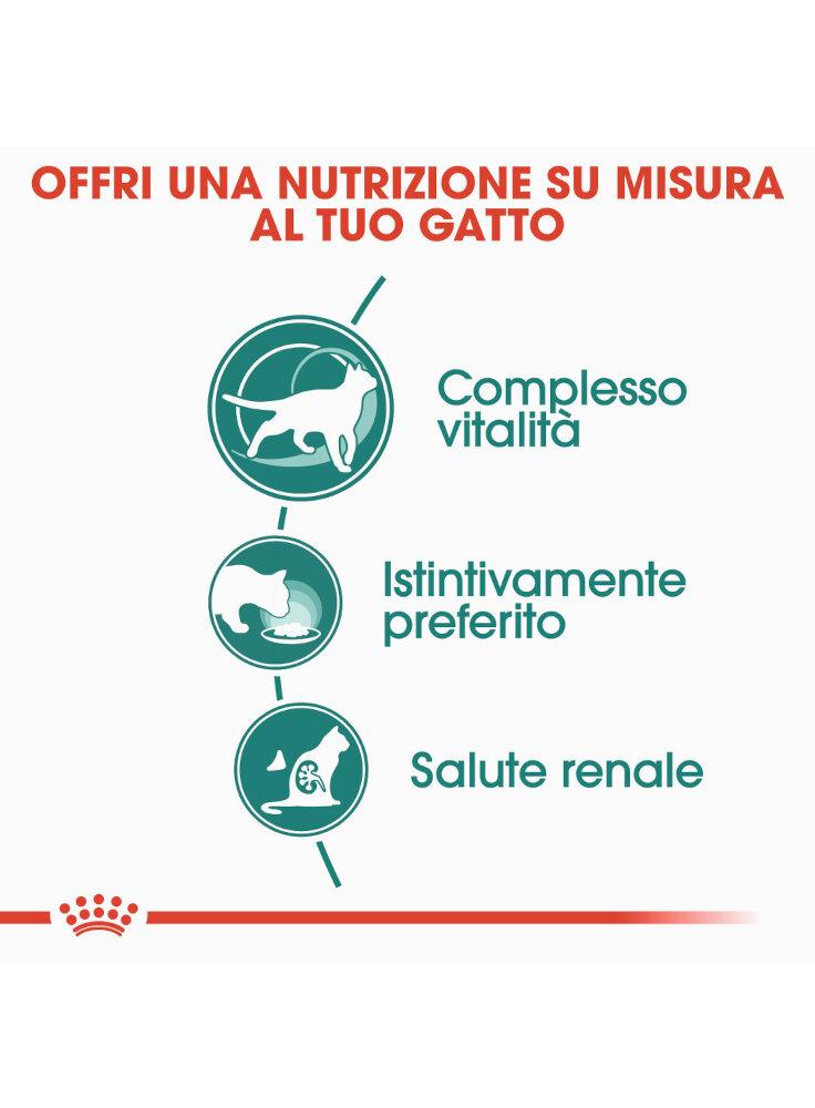 instinctive-7-buste-gatto-royal-canin-12x85gr-1