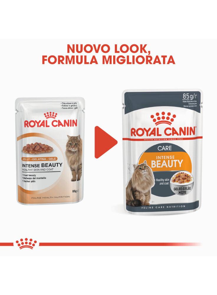 intense-beauty-buste-gatto-royal-canin-2