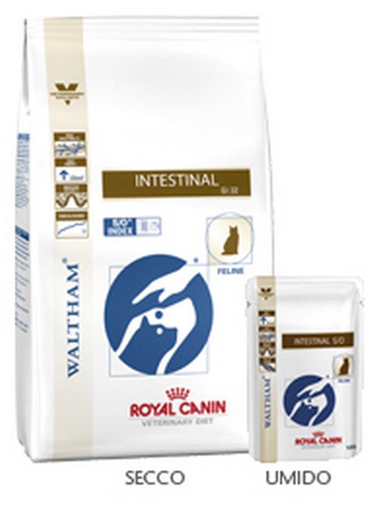 Royal canin feline intestinal buste umido 12x100