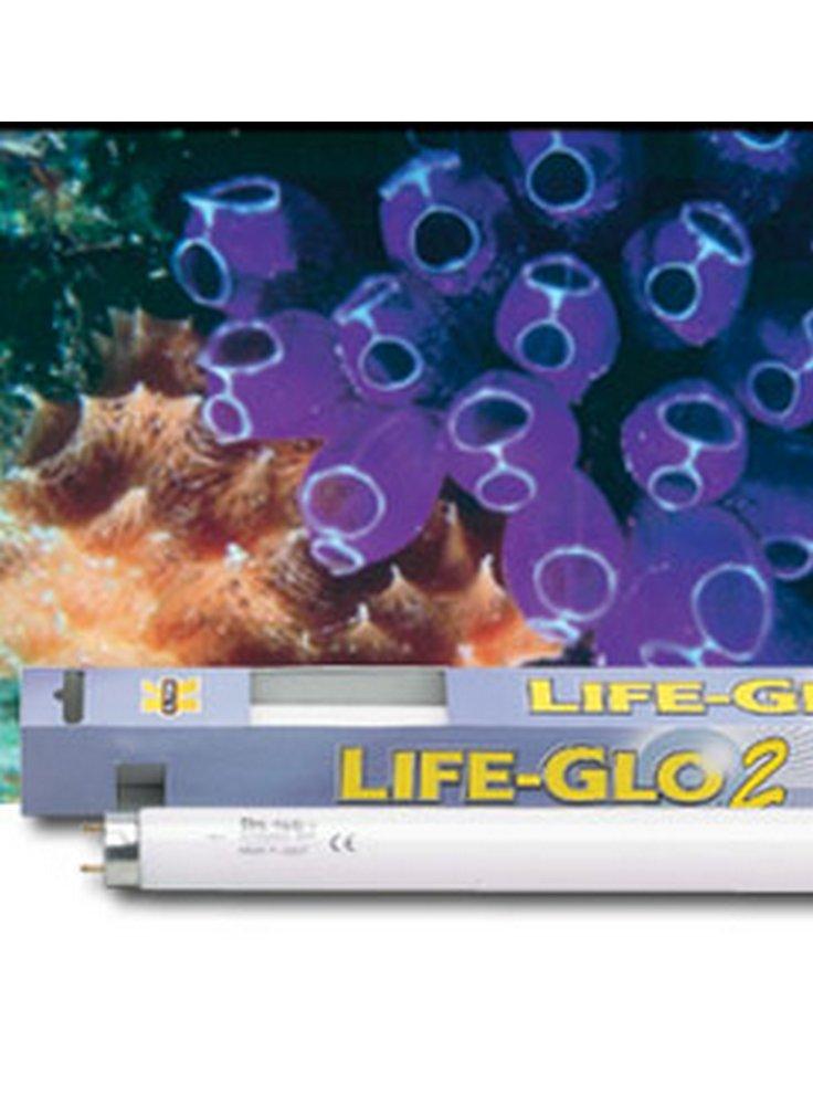 Lampada t5 LIFE-GLO II 24W lung. 55 cm.