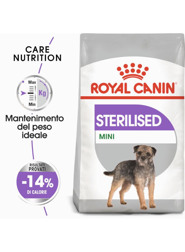 Mini sterilised cane Royal canin