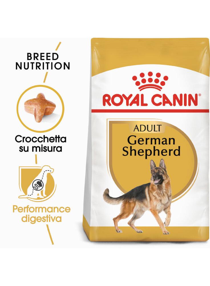 Pastore Tedesco GERMAN SHEPHERD Adult Royal Canin