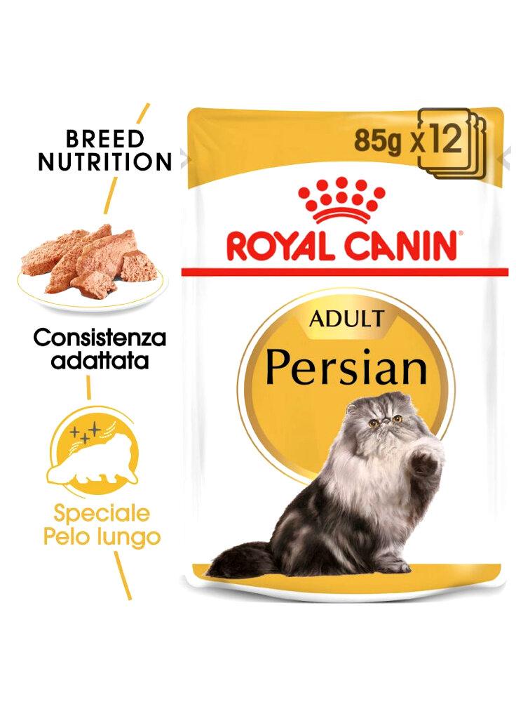 Persian buste Royal Canin 12x85 gr
