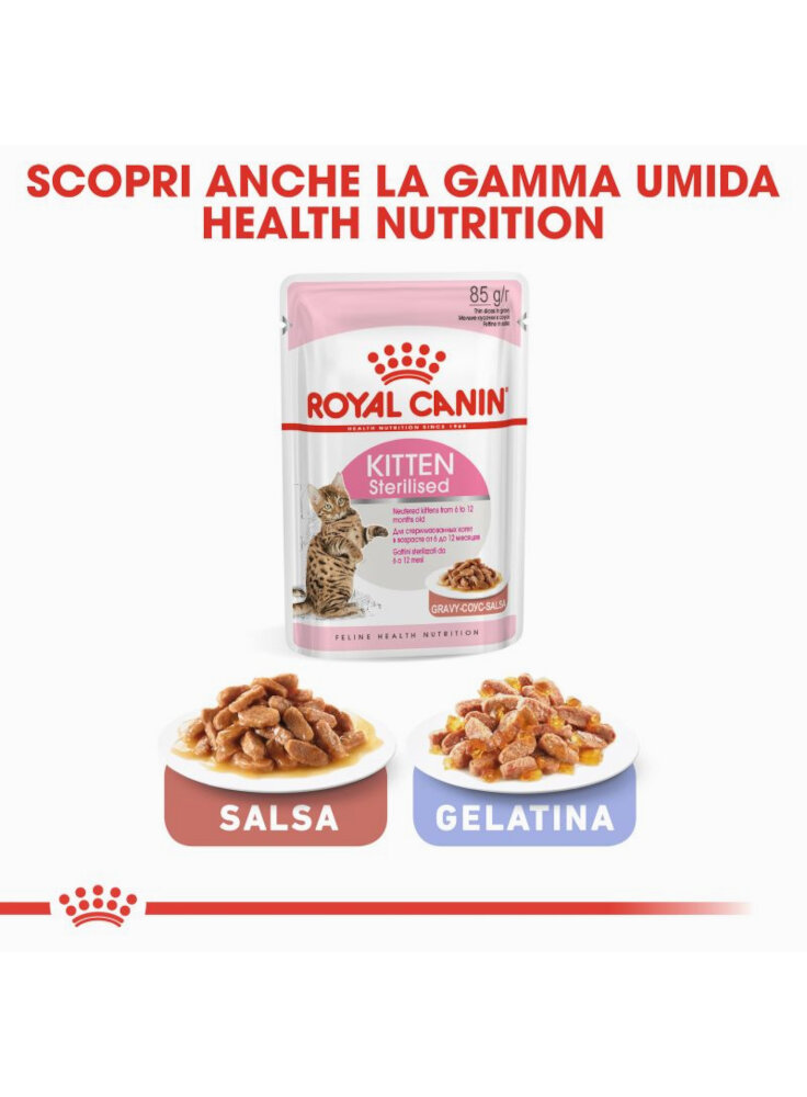rc_fhn_kittensterilised_cv6_001_italy_italian__4