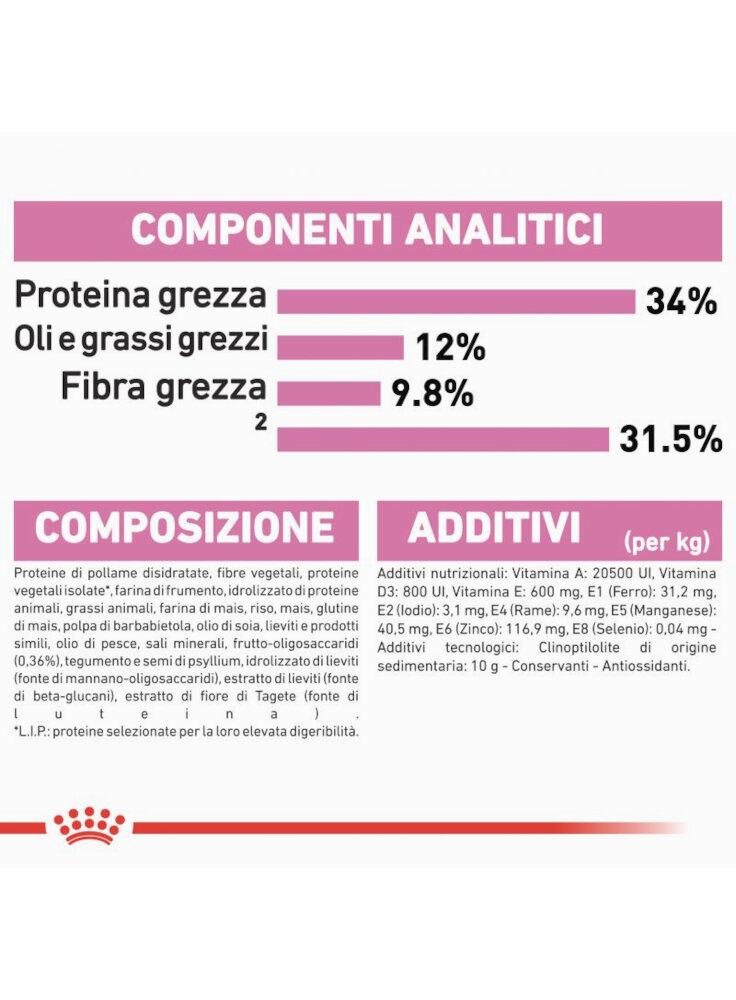 rc_fhn_kittensterilised_cv9_1_005_italy_italian__8