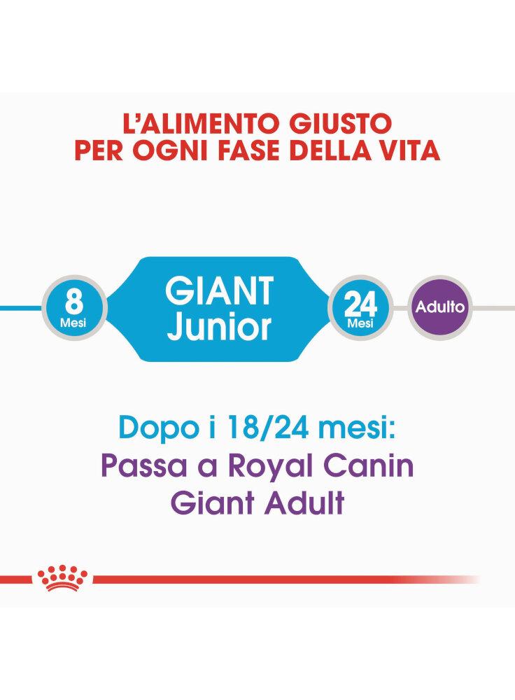 royal-canin-giant-junior-alimenti%20%281%29