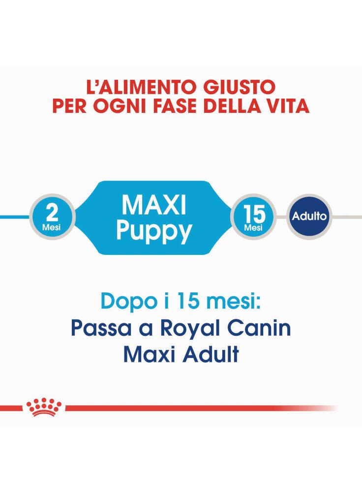 royal-canin-maxi-junior%20%282%29