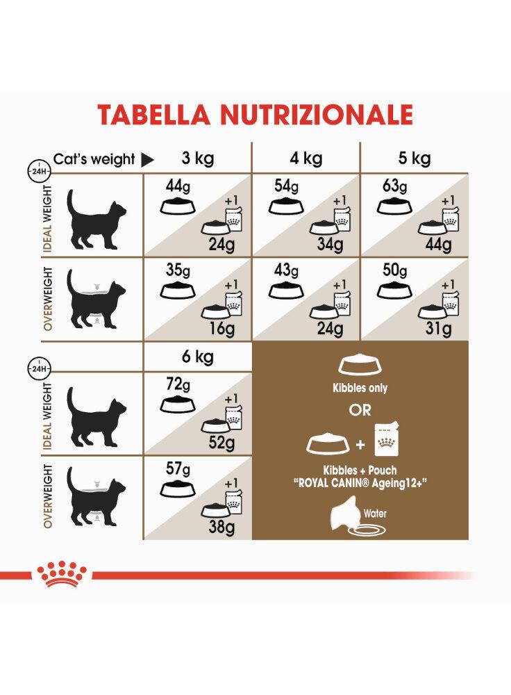 senior-age-ageing-12-sterilised-gatto-royal-canin-4