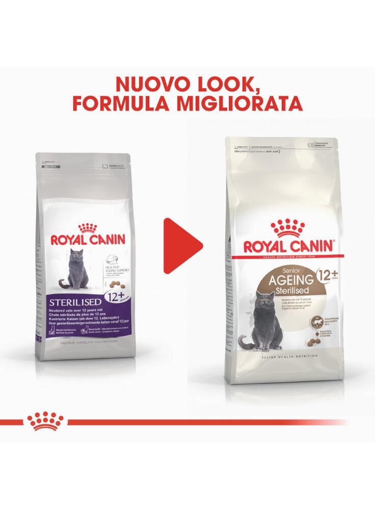 senior-age-ageing-12-sterilised-gatto-royal-canin-5