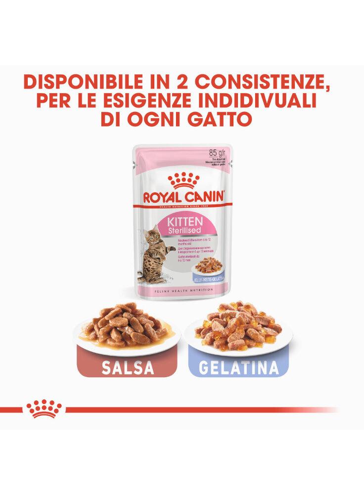 sterilised-kitten-jelly-royal-canin-12x85-gr-5