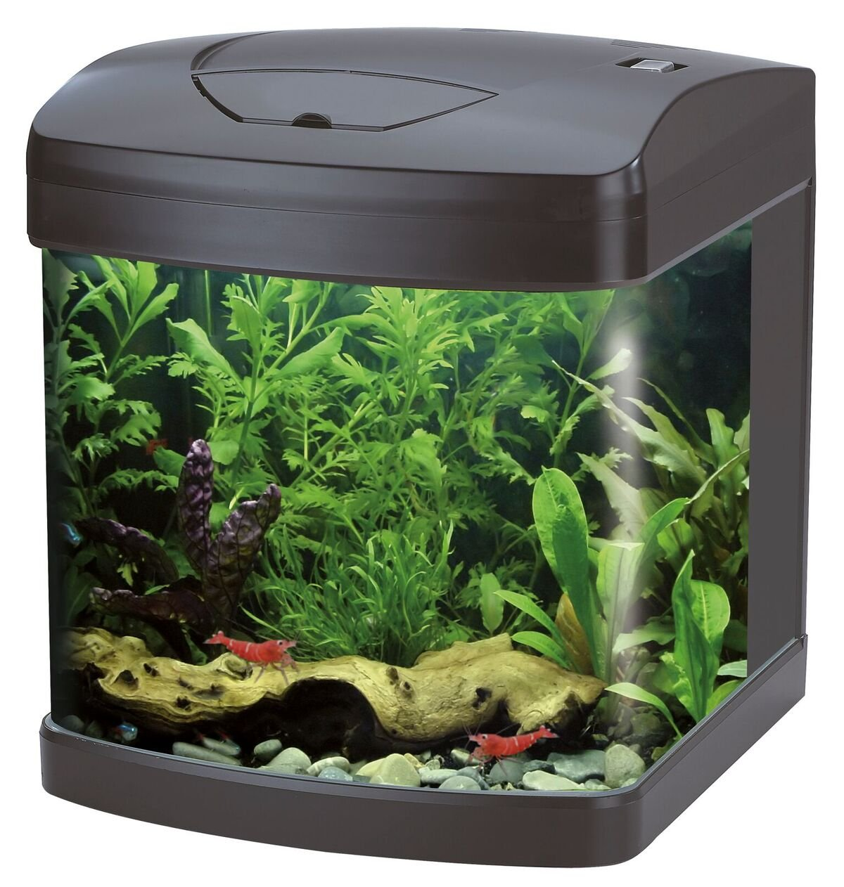 Acquario cubo xcube 26 led nero wave petingros for Acquario 90 litri
