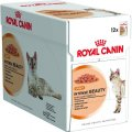 INTENSE BEAUTY [12] 12x85gr (Bustine) Royal Canin