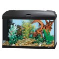 Acquario capri 60 led  ferplast lt 60 + mobile 77x3364h cm (AQ112)