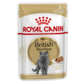 Royal Canin wet cat British Shorthair 12x85 gr