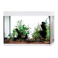 Acquario Askoll Pure XL High Cube LED