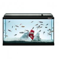 Acquario Askoll ambiente 100 advance 170 litri