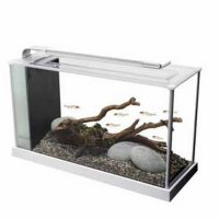 Acquario Fluval spec 19lt led