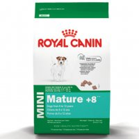 Mini Mature cane Royal Canin