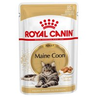 Maine Coon buste Royal Canin 12x85 gr