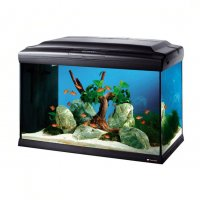 Acquario CAYMAN 60 led