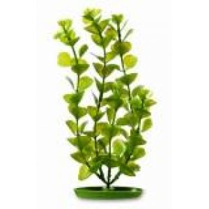 Pianta finta per acquario MONEYWORT AQUASCAPER cm30 PP-1216