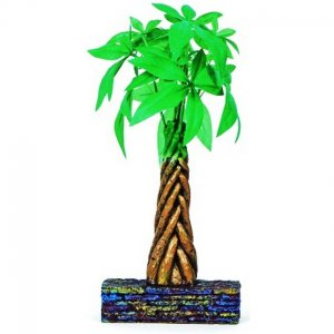 Marina Betta kit Braided Money Tree 3 lt