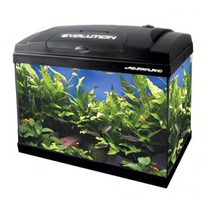 Acquario Evolution 50 haquoss lt 56 cm 50x30x46h expo
