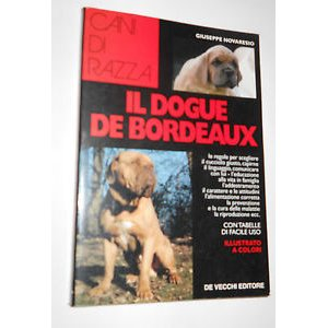 Il dogue de bordeaux