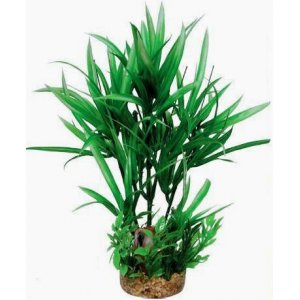 Pianta decorativa per acquario con base phytos 20 cm 24