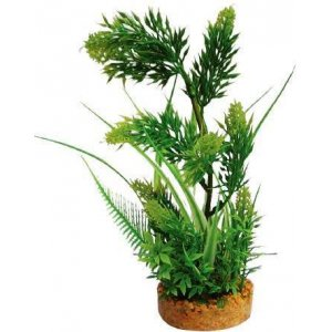 Pianta decorativa per acquario con base phytos 5 cm 25