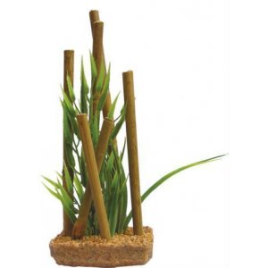 Pianta decorativa con base phytos bamboo