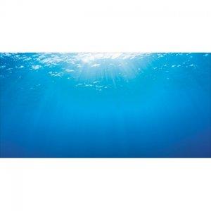 Poster sfondo juwel 2 acqua marina juwel for Sfondi per acquari